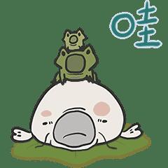 錦鯉伊凡的日常特輯