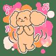 Good mood Poodle