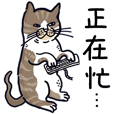 Yamamoto Cat - It's my life