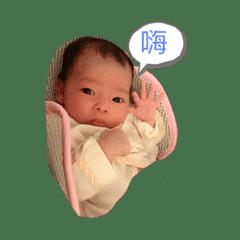 hello芯芯