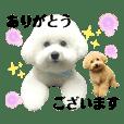 wakun.wakuwaku&riku._20190718142158