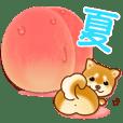 花よりわんこ2(夏、柴犬、フルーツ)