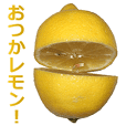 Lemon is great.