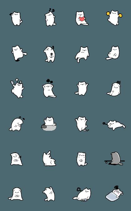 POKKY CAT