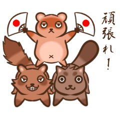 Raccoon dogs stickers