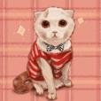 ★猫 ねこ ネコ★