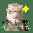 kometsubu_20190731041106