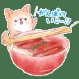 Pochatto dog's daily Sticker.(summer)
