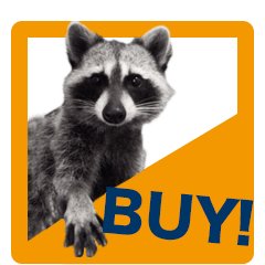 Raccoon_obama__1