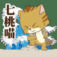 Qitao Meow