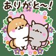 Shiba and Nyanko