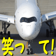 Aircrafts comments 012