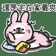 污嘴兔:耍廢兔與激動黑熊