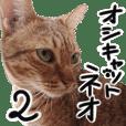 My Ocicat NEO Sticker2.