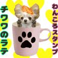 chihuahua latte dog sticker.