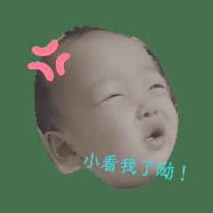 pig_20190816134635