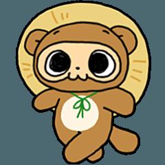 Cute raccoon boy Poponta