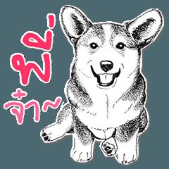 Dog Sketch Speak