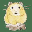Cute Hamster DaiDai
