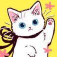 TATAME-PI-'s white kitten