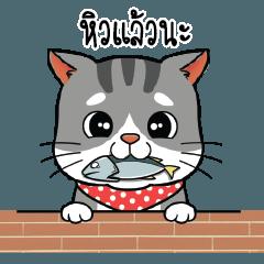 น้องปลาทู แมวจอมซน