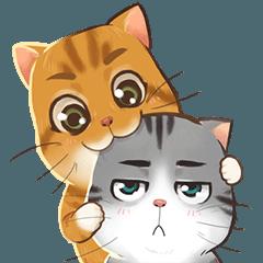 Tao-Tao & Stubborn Cats