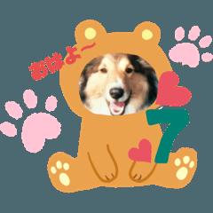nanako_20190901203328