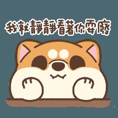米犬日常 - 耍廢特輯