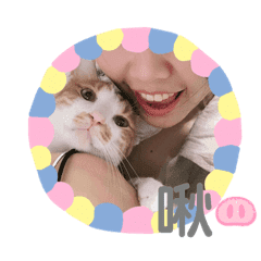 Anns life stickers
