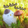 mayutamachan greetings