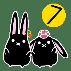 twins lapin7