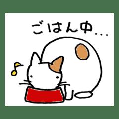 ねこの1日(^_^)
