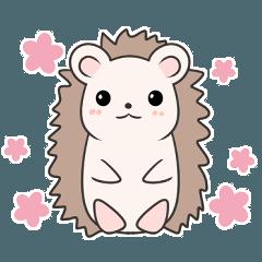 Healing hedgehog