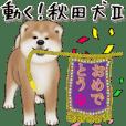 Move! Akita Dog2
