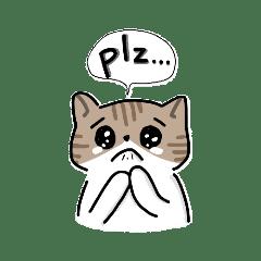 兩隻貓-貓咪手繪貼圖