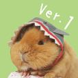 Guinea pig Days Ver.1