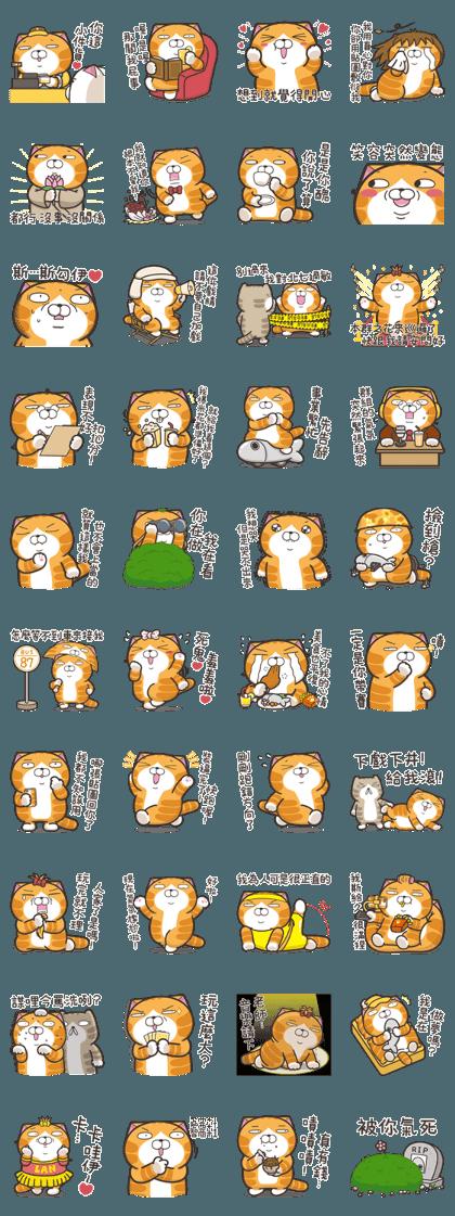 Lan Lan Cat 15