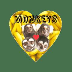 コモンマーモセットとヨザルのお猿スタンプ