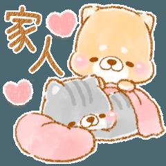 家庭專用❤️療癒柴犬&懶懶貓❤️2