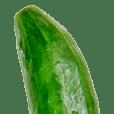 Cucumber_!