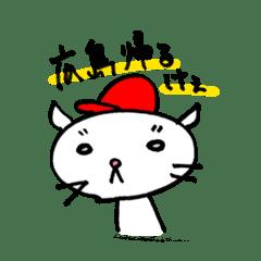 """広島弁のネコ""""スピカさん"""""""