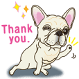 French bulldog's cream sticker. EV