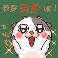 momo cow:Huimin