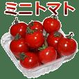 Mini Tomato is great