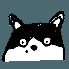 大貓米喃喃自語