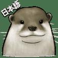 Otter family's life (Japanese)