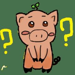 Green seedling pig