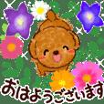 秋♡可愛く動くトイプードル(敬語)
