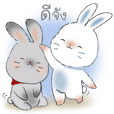 YingYing ang ZhanZhan cute rabbits