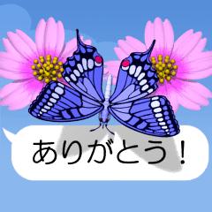 スマホの上の虹色蝶《Movie 03》